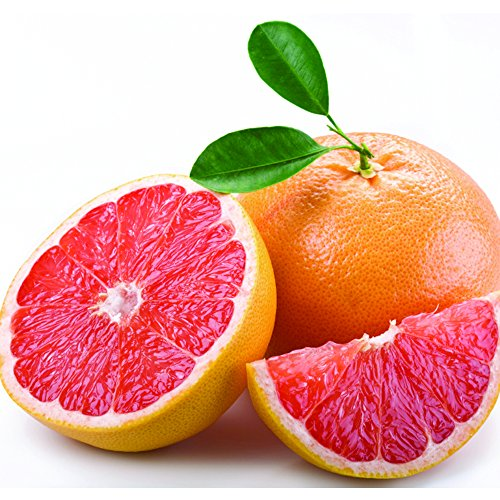 Florida Indian River Red Grapefruit - 1 tray (Indian River Fruit compare prices)