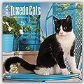 Tuxedo Cats 2017 Square 12x12 Wall Calendar