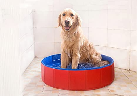 Vasca Da Bagno Per Cani : Pidsen piscina pieghevole per animali domestici vasca da bagno