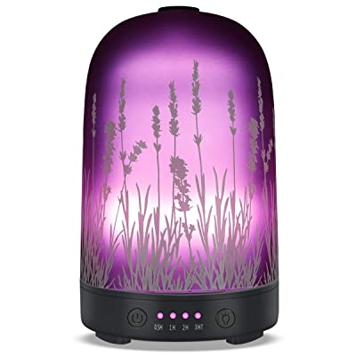 PUSEAYZ Glass Essential Oil Diffuser 100ml