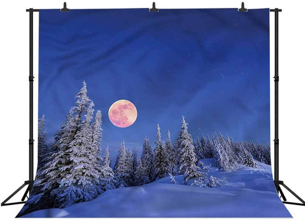 5x5FT Vinyl Wall Photography Backdrop,Winter,Full Moon Idyllic Habitat Photo Backdrop Baby Newborn Photo Studio Props