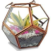 TrustBasket Geometric Terrarium (Multicolour)