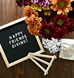 Premium Changeable 10x10 Felt Letter Board with 290 Letters, Numbers & Symbols, Oak Wood Message Frame, with Free Canvas Bag and Stand