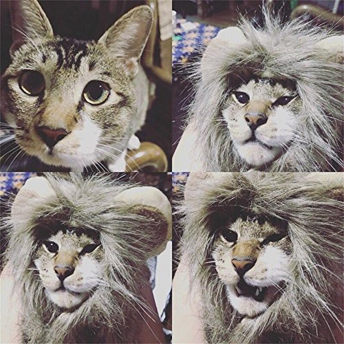 Cat and Small Dog Lion Mane Wig Costume Adorable Cute Fancy Dress for Halloween Christmas Easter Festival Party Activity (Simba Costume For Dog)