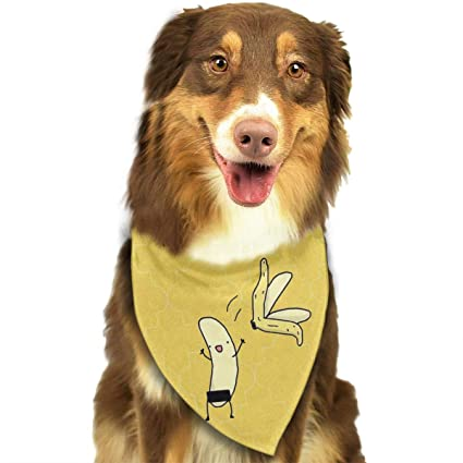 e23ef102f93 Amazon.com: FRTSFLEE Dog Bandana Banana Cartoon Let's Get Naked Scarves  Accessories Decoration for Pet Cats and Puppies: Home & Kitchen