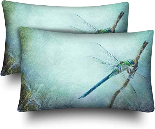 Amazon Com Spxubz Vintage Shabby Chic Dragonfly Home Decor Gift Rectangular Indoor Cotton Pillowcase Two Sides 2pc Home Kitchen