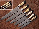06 Pc's Custom Damascus Steel kitchen knife set 1071 (Bone & Horn)