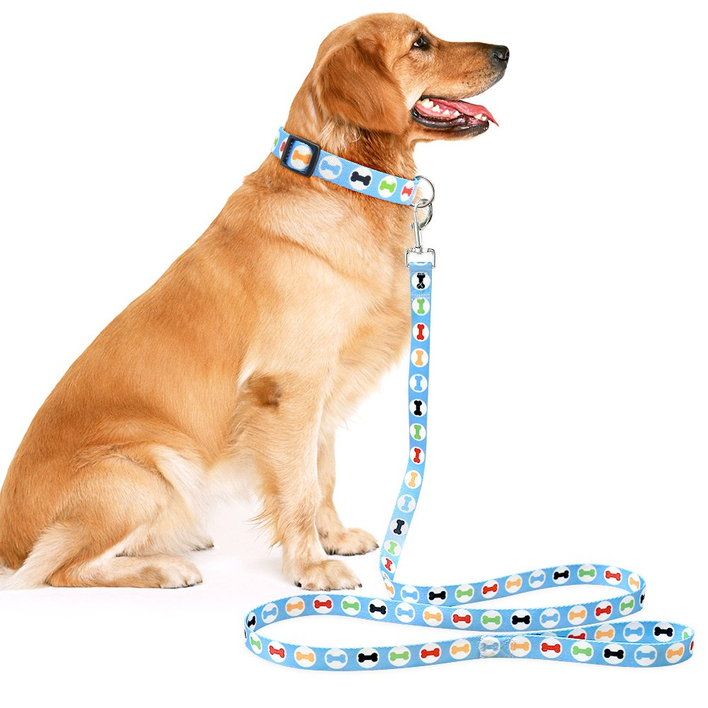 Illumifun Dog Leash Nylon Blue Bone Printed Dog Walking Leash, Washable Heavy Duty Pet Leash for Small Medium Large Girl & Boy Dogs (70.8Inch, Blue Bone)