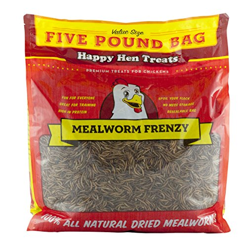 61ccBtuIikL - Happy Hen Treats Mealworm Frenzy Pet Treat (1 Pouch), 5 lb