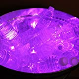 LumaBase 68112 12 Count Submersible LED Lights, Purple