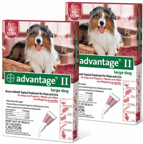 Advantage II 12pk Dog 21-55 lbs
