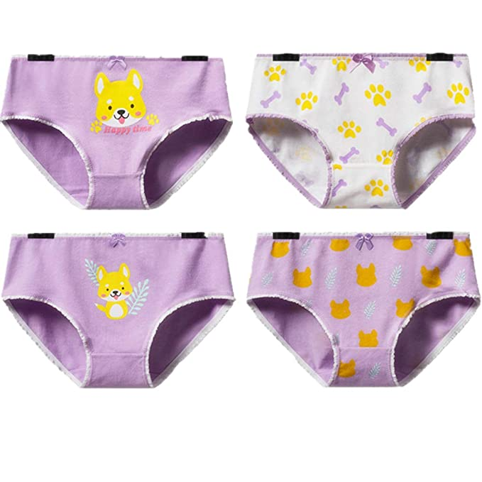 2b880d60259 Image Unavailable. Image not available for. Color: YOMORIO Cute Corgi Dog Panties  Womens ...