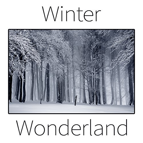 - Winter Wonderland - Instrumental, Christmas Music, Traditional Carols, Christmas Songs, White Holiday with Family, Magical Atmosphere