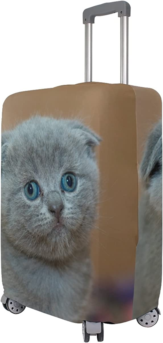 British Shorthair Travel Luggage Cover Stretchable Pulling Cloth Suitcase Protector Fits 18-20 Inches Luggage