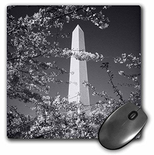 Danita Delimont - Washington DC - Monument, cherry blossom, Washington DC, USA - US09 SSM0043 - Scott T. Smith - MousePad (mp_143568_1)