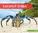 Coconut Crabs (World's Weirdest Animals)
