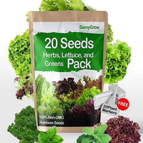 SavvyGrow Herb Lettuce Green Seeds Combo - Perfect Christmas Gifts - 20 Variety Heirloom Garden Seeds for Planting - 95% Plus Germination Rate, Non-GMO & Source in USA Vegetable Seeds