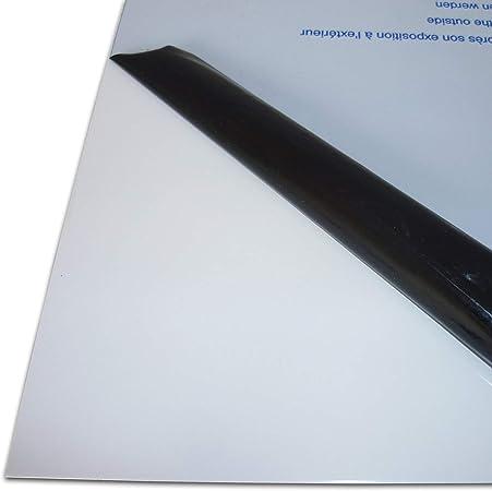 Plaque Alu B /& T T/ôle daluminium lamin/ée 1,5/mm d/épaisseur Face brute avec film de protection d/écran en D/écoupe