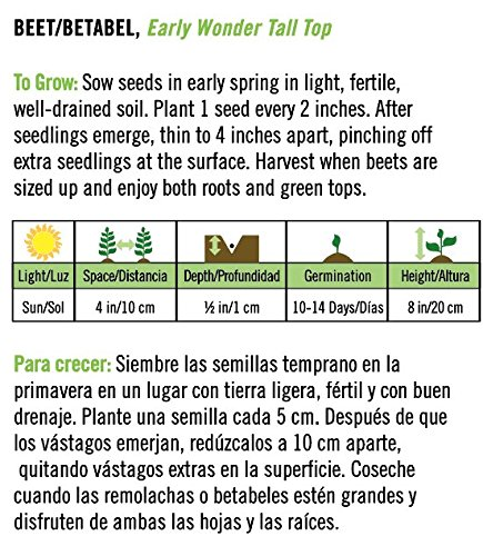 Amazon.com : Early Wonder Tall Top Beet/Betabel - Spanish/English : Garden & Outdoor