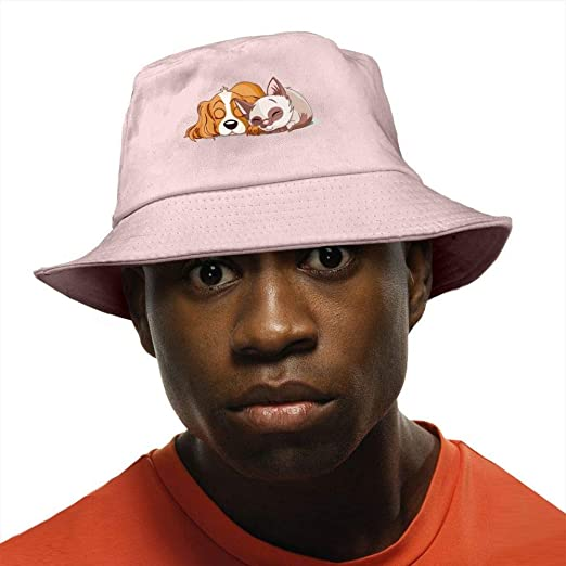 570cb254542 Image Unavailable. Image not available for. Color  Cat And Dog Bucket Hat  ...