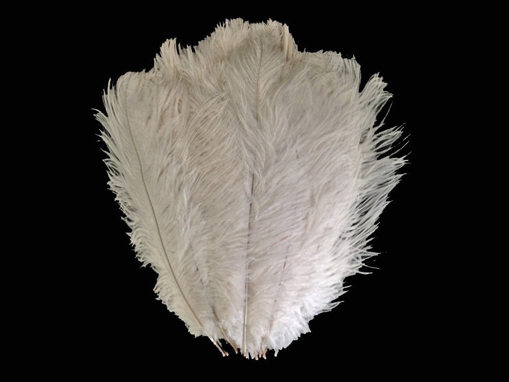 Ostrich Feathers , 1/2lb - 19-24'' OFF White Large Ostrich Drabs Wholesale Feathers (bulk)