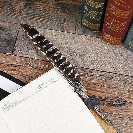 Penna dOca da Scrittura con Inchiostro Quill Pen Calligrafia Stilografica Penna Inchiostro Metallo con 5 Punti Inchiostro e Lettera per Uso Personale e Regalo Supporto Penna Piuma