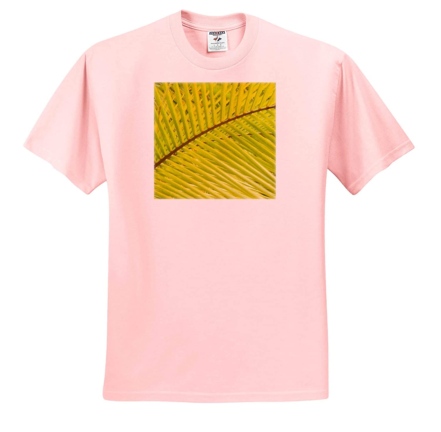 Central America Coconut Palm Fronds 3dRose Danita Delimont Adult T-Shirt XL Natural Patterns ts/_314378 Honduras