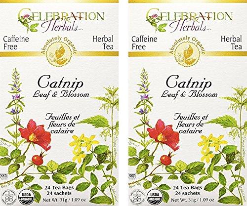 Celebration Herbals Organic Catnip Leaf and Blossom Tea Caffeine Free -2 Pack (48 bags in Total)