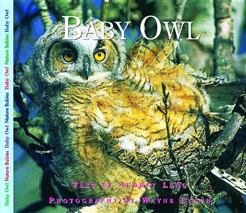 Baby Owl (Nature Babies) pdf epub