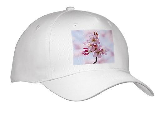 77d298aa5c1 3dRose Alexis Photography - Flowers Sakura Beautiful - Stunning Pink Sakura  Cherry Flowers Against Soft Pink