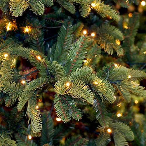 Prextex 100-Count Clear Green Wire Christmas Light Set Christmas Decorations by Prextex (Image #3)'