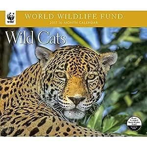 2017 WORLD WILDLIFE FUND Wild Cats Deluxe Wall Calendar