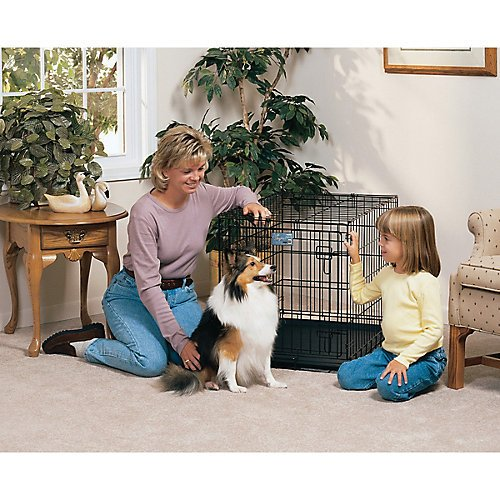 Life Stages Fold & Carry Single-Door Dog Crate Size: Small – 24″ L x 18″ W x 21″ H Review