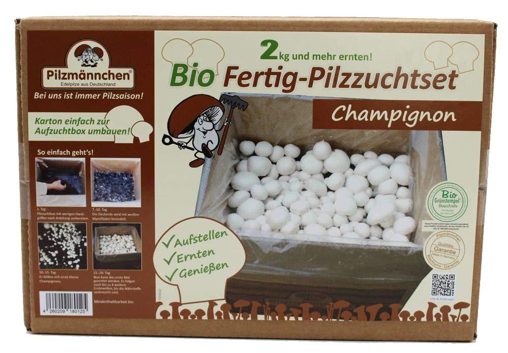 Pilzmännchen Bio Fertig-Pilzzuchtset Champignon Klein 4260209180125