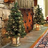 3 Ft Pre-Lit Entryway Trees-Set of 2