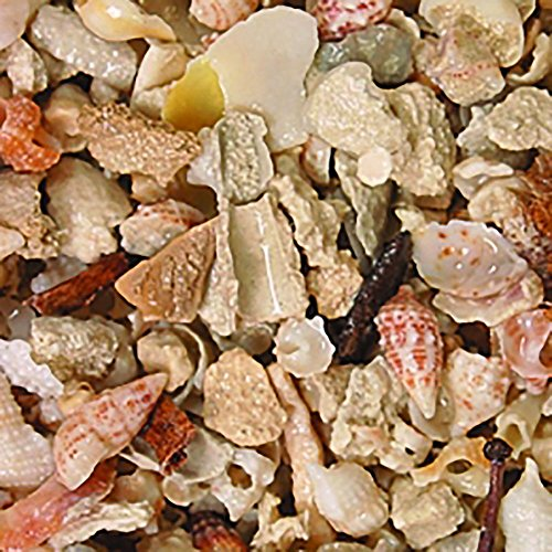 Puka Shell Substrate (Safe & Non-Toxic (Various Sizes) 44 Pound Bag of Gravel, Rocks & Pebbles Decor for Freshwater & Saltwater Aquarium w/ Tropical Beach Puka Shell Style [Light Brown, Tan, Pink, Red & White])