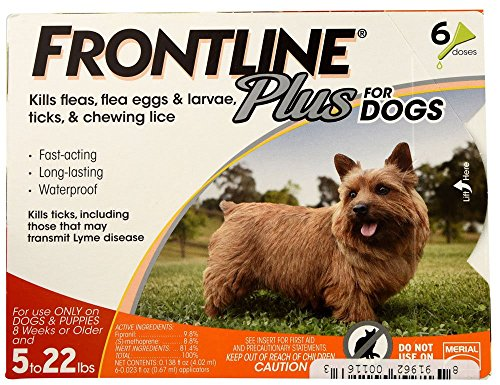 61cfU8dwqNL - Frontline Plus for Dogs Small Dog (5-22 pounds) Flea and Tick Treatment, 6 Doses