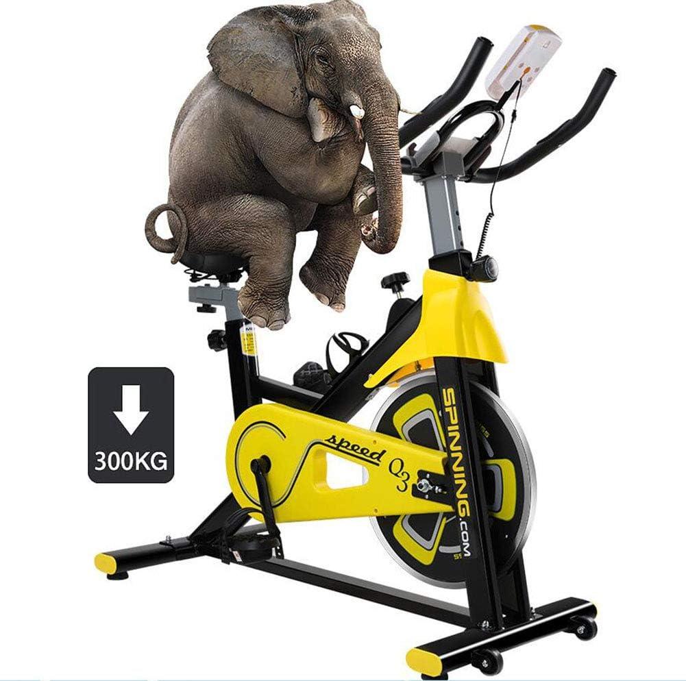 BF-DCGUN Bicicleta de Ejercicio para Ciclismo Indoor, Volante ...