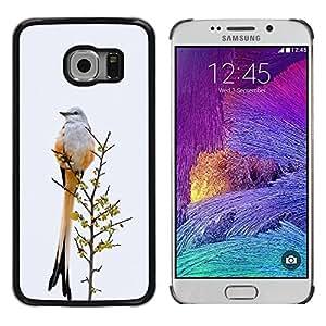 TopCaseStore / la caja del caucho duro de la cubierta de protección de la piel - Grey Winter Ornithology Feathers - Samsung Galaxy S6 EDGE SM-G925