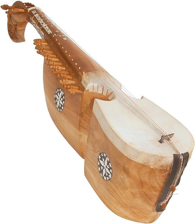 Rebab Afghanistan, estuche de lujo: Amazon.es: Instrumentos musicales