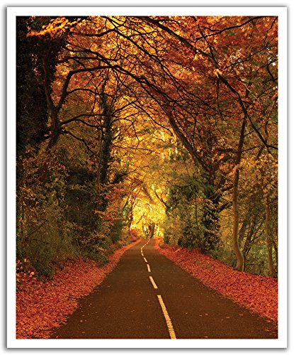 JP London Peel and Stick Removable Wall Decal Sticker Mural, Open Road Harley Forest, 19.75 by (Harley Open Road Mural)