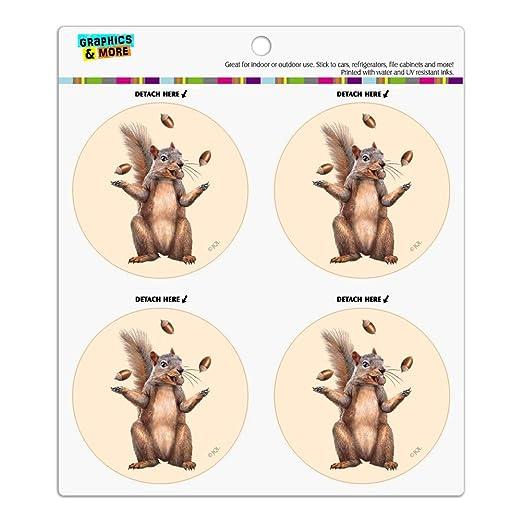 Squirrel Juggling His Nuts Crazy Funny Automotive Car Vinyl Circle Magnet