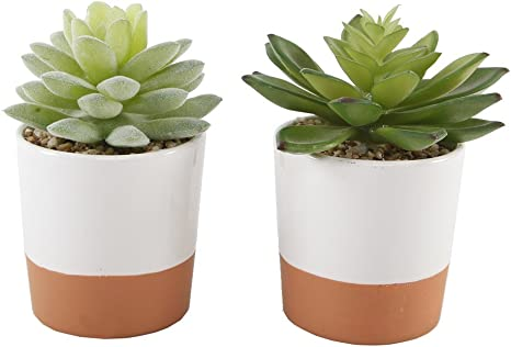 Flora Bunda Artificial Plant Succulent Table Sign Tin Pot,Set of 6 in PVC Box