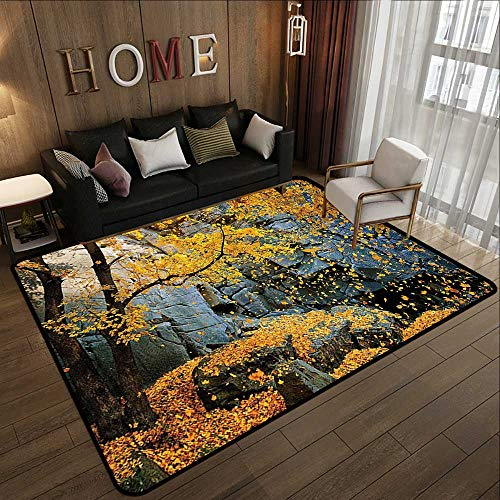 Outdoor Carpet,Leaves Decor,Canadian Maple Trees Falling Leaves Down Surrounded by Scenic Rocks Stones Foliage Decor,Slate Blue Yellow 71