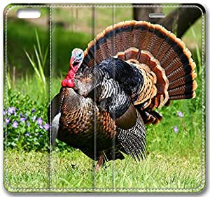 Animals Pheasant On The Grass Case for iPhone 6 Plus 5.5 inch(Compatible with Verizon,AT&T,Sprint,T-mobile,Unlocked,Internatinal)