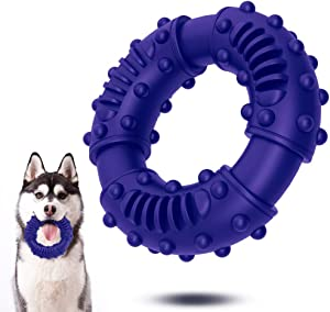 ABTOR Ultra Durable Dog Chew Toy - Toughest Natural Rubber - Texture Nub Dog Toys for All Aggressive Chewers Large Dogs Puppy - Fun to Chew, Dental Care, Training, Teething (B-Blue)