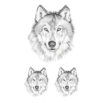 5719c9baf10d5 Amazon.com : WYUEN 5 Sheets Waterproof Temporary Tattoo Wolf Tattoo Sticker  For Women Men Body Art 9.8X6cm : Beauty