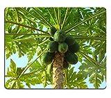 Liili Mouse Pad Papaya Papaya Fruit Plant Fresh Natural Rubber Material Image 243241