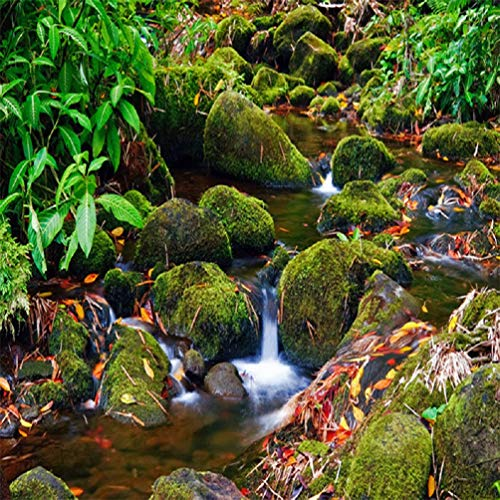 Wall Mural 3D Wallpaper Moss Flooring Painting of Small Streams and Rivers Modern Wall Paper for Living Room Bedroom Tv Wall Decor