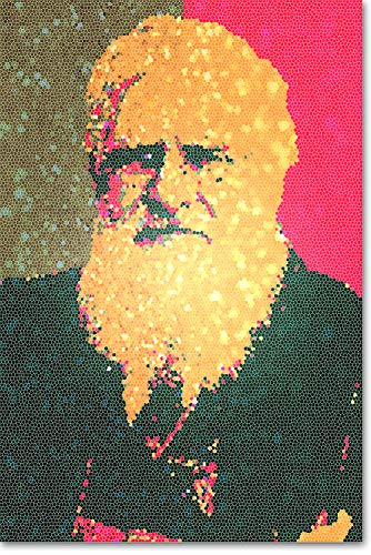 Wallace Glass Print - // Best Quality Prints // Alfred Russel Wallace Art Print 'Stained by Glass' - Photo Poster Gift - Russell Evolution Biology - Size: 60cm x 40cm